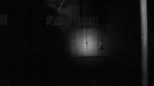 Shadow (14)