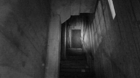Shadow (7)